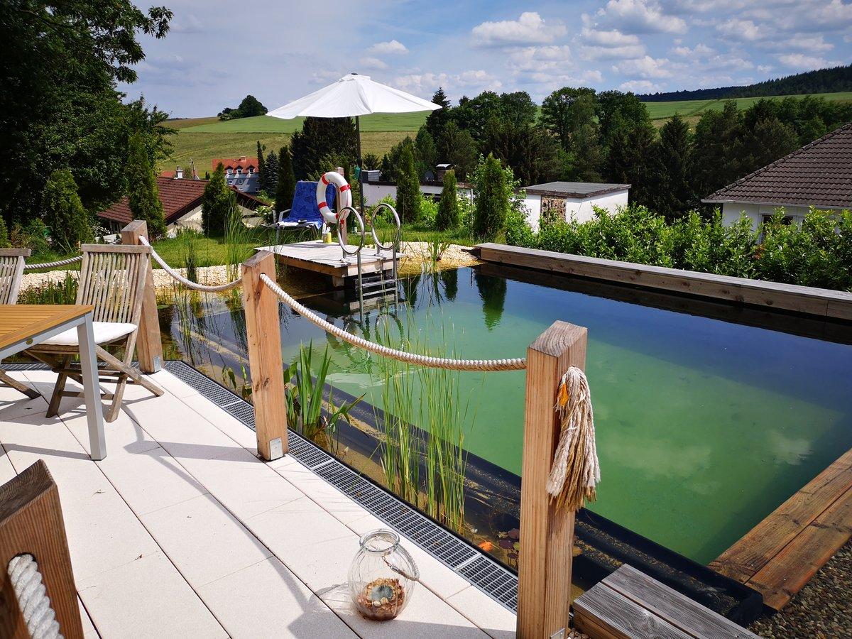 Tauchen Sie Jetzt In Ihren Schwimmteich Ein Werner Gartengestaltung