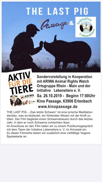 Erlenbach Kinopassage