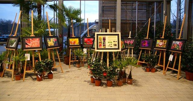 Löwer Gartencenter